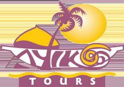 ayikoo tours ghana - logo