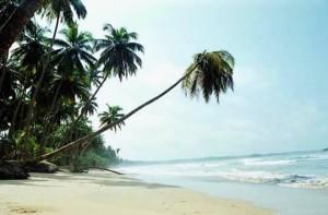 Groene en tropische zuiden van Ghana
