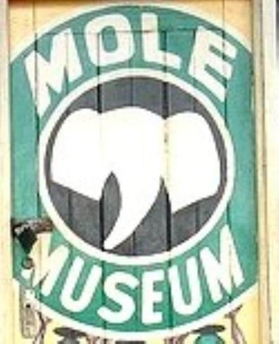 Mole nat. park Ghana - museum
